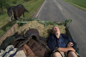 kenneth asleep on horsecart