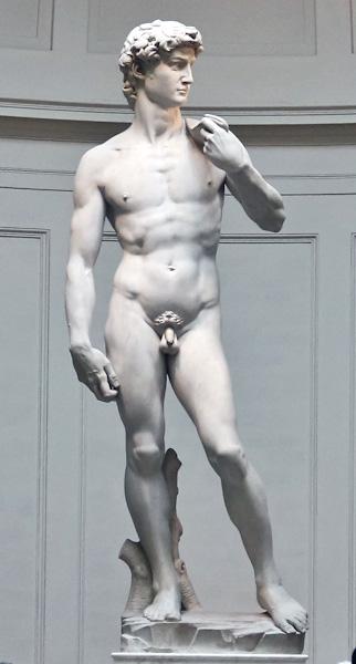 Michelangelo-Daivd.jpg